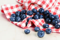 Sweet details of blueberry Stock Images