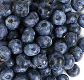 Sweet details of blueberry. Picture with sweet blackberry details Stock Photography