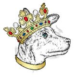 A sweet dog in a beautiful golden crown. Purebred puppy. Vector illustration for a postcard or a poster, print on clothes. Fashion and style, accessories Royalty Free Stock Photography
