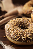 Sweet donut with chocolate Stock Photography