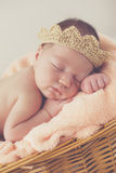 Sweet dream newborn baby in a big basket Stock Photography