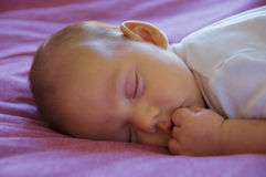 Sweet dreams. Royalty Free Stock Images
