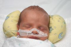 Sweet Dreams. Premature baby sleeping peacefully Royalty Free Stock Photos