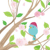 Sweet dreams birdie. A cute bird taking a nap on a cherry tree Stock Images