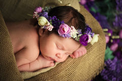 Sweet dreams of newborn baby. Beautiful little girl with lilac flowers Royalty Free Stock Image