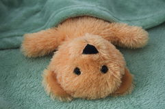 Sweet dreams teddy bear stock images