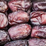 Sweet dried dates close up Stock Photography