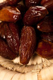 Sweet dried dates fruit in small bowl, mediterranean desert on w Stock Photos
