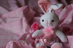 Sweet Easter Bunny Royalty Free Stock Photos