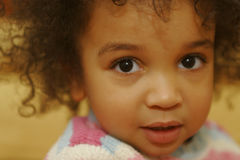 Sweet Face. A beautiful mixed race little girl looks into the lens Stock Photos