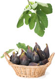 Sweet fig  fruits with leaves in a basket Stock Photo