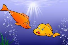 Sweet fish Stock Image