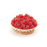 Sweet flavorful raspberry Stock Photography