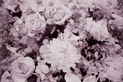 Sweet flowers bouquet, sepia toned for background Royalty Free Stock Photos
