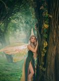Sweet forest angel, nymph with perfect thick white hair in image of dreamy spirit with butterfly wings. attractive fairy stock images