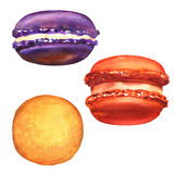 Sweet french colorful macarons isolated on white Royalty Free Stock Images