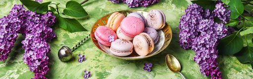 Sweet french macaroons Royalty Free Stock Photos