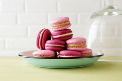 Sweet french macaroons on vintage plate. Food close-up Stock Images