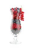 Sweet fresh berries in cocktail glass, isolated. Sweet fresh berries (raspberries, strawberries, blueberries, red currants) in cocktail glass, isolated Stock Photography