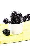 Sweet Fresh  Blackberries in a white bowl Stock Image