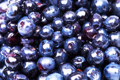 Sweet fresh blueberry Stock Photos