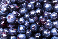 Sweet fresh blueberry Royalty Free Stock Images