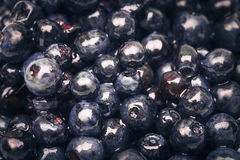 Sweet fresh blueberry Royalty Free Stock Photography