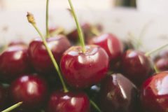 Sweet fresh cherries in film style Stock Photography