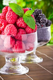 Sweet fresh fruits in glass goblet Stock Photography
