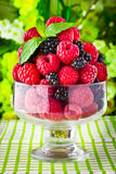 Sweet fresh fruits in glass goblet Royalty Free Stock Images