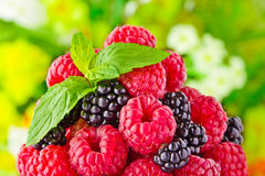 Sweet fresh fruits Stock Photos