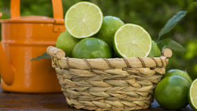 Sweet fresh lemon in natural light on old wood Royalty Free Stock Photography
