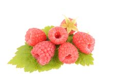 Sweet fresh raspberry fruit. With green leaf on white background Royalty Free Stock Image