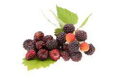 Sweet fresh raspberry fruit. With green leaf on white background Royalty Free Stock Photos