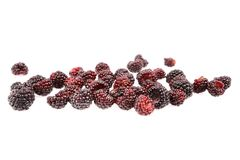 Sweet fresh raspberry fruit. On white background Stock Photography