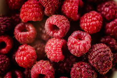 Sweet fresh raspberry fruit. Hurvest fruit concept Royalty Free Stock Photo