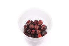 Sweet fresh raspberry fruit on white. Sweet fresh raspberry fruit in the cup Royalty Free Stock Photography