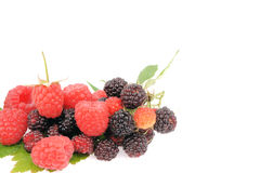 Sweet fresh raspberry fruit on white. Sweet fresh raspberry fruit  with green leaf Stock Photography