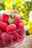 Sweet fresh raspberry fruits Stock Photos