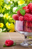 Sweet fresh raspberry fruits Royalty Free Stock Images