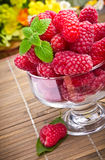 Sweet fresh raspberry fruits Royalty Free Stock Photo