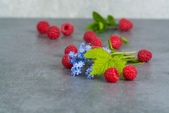 Sweet fresh raspberry with leaves, on grey background, copy spac. E Stock Photography