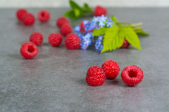 Sweet fresh raspberry with leaves, on grey background, copy spac. E Stock Photos