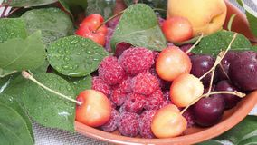 Cherries, Apricot Fruit and Raspberries with Water Drops and Green Leaves. Sweet fresh red and yellow cherries, apricot fruit and raspberries with water drops stock video