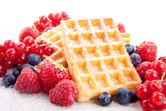 Sweet fresh tasty waffles with mixed fruits  Royalty Free Stock Image