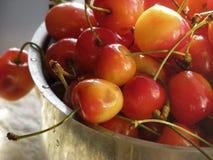 Sweet fruit cherries tasty food. Fruits cherry garden berries tasty food desert health nature earth sun red stock photography