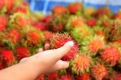 Sweet fruits rambutan in the market Stock Image
