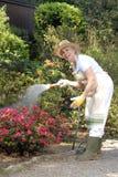 Sweet garden. Royalty Free Stock Image