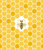 Sweet geometric pattern with honeycomb and bee. In the center. Seamless flat background vector illustration Stock Image