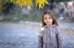 Sweet girl in autumn Stock Image